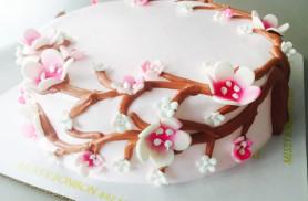 MBB Cake 006